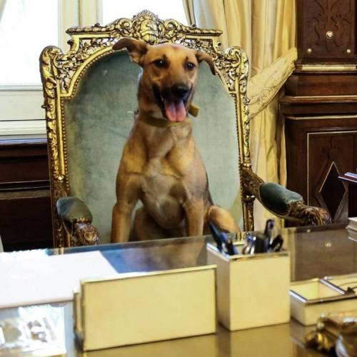 balcarce-macri-presidencial-facebook-mauricio